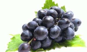Можно ли виноград при панкреатите