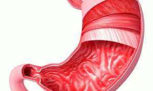 Диагностика и симптомы язвы антрального отдела желудка