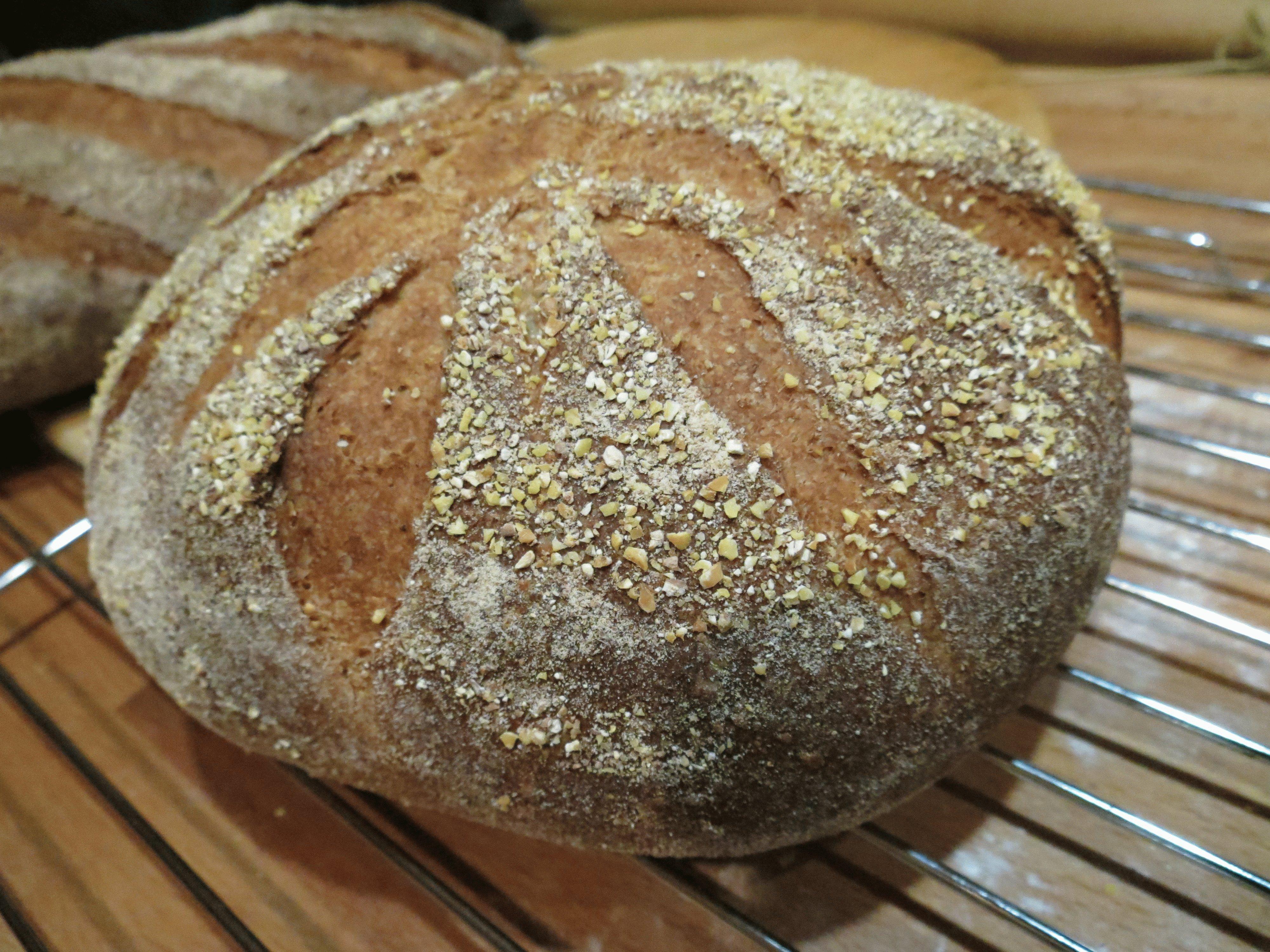 Какой хлеб можно есть при язве желудка?