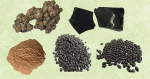 Разнообразие прополиса