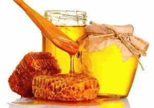 Алоэ при гастрите: сок с мёдом при повышенной кислотности