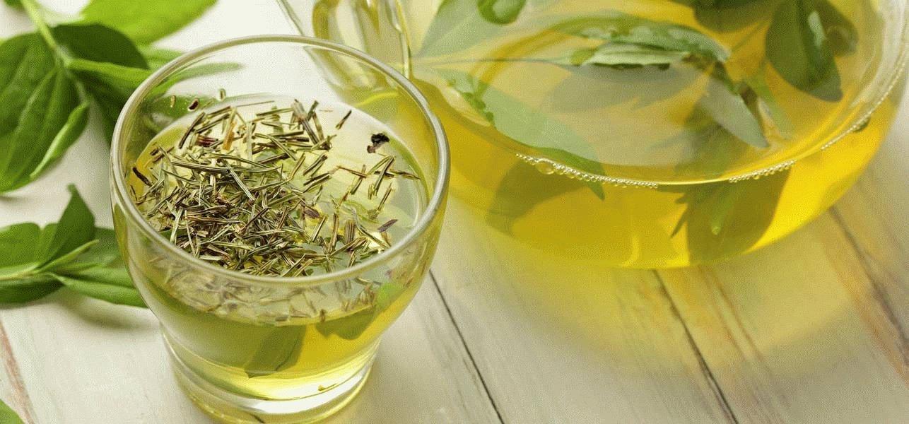 Зелёный чай при гастрите: можно ли пить, сравнение с чёрным и травяным