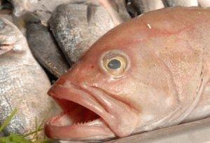 Рыба болеет анизакидозом