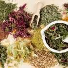 Сборы трав при язвенной болезни желудка