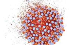 Гепатит С генотип 3 или 3а