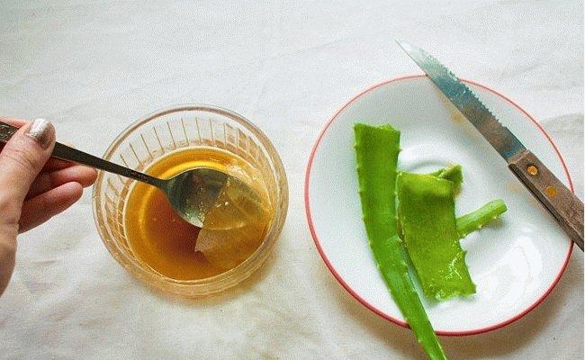 Как приготовить алоэ с медом для лечения желудка: рецепт народного средства