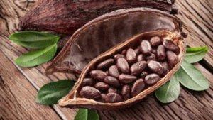 Ароматные какао-бобы