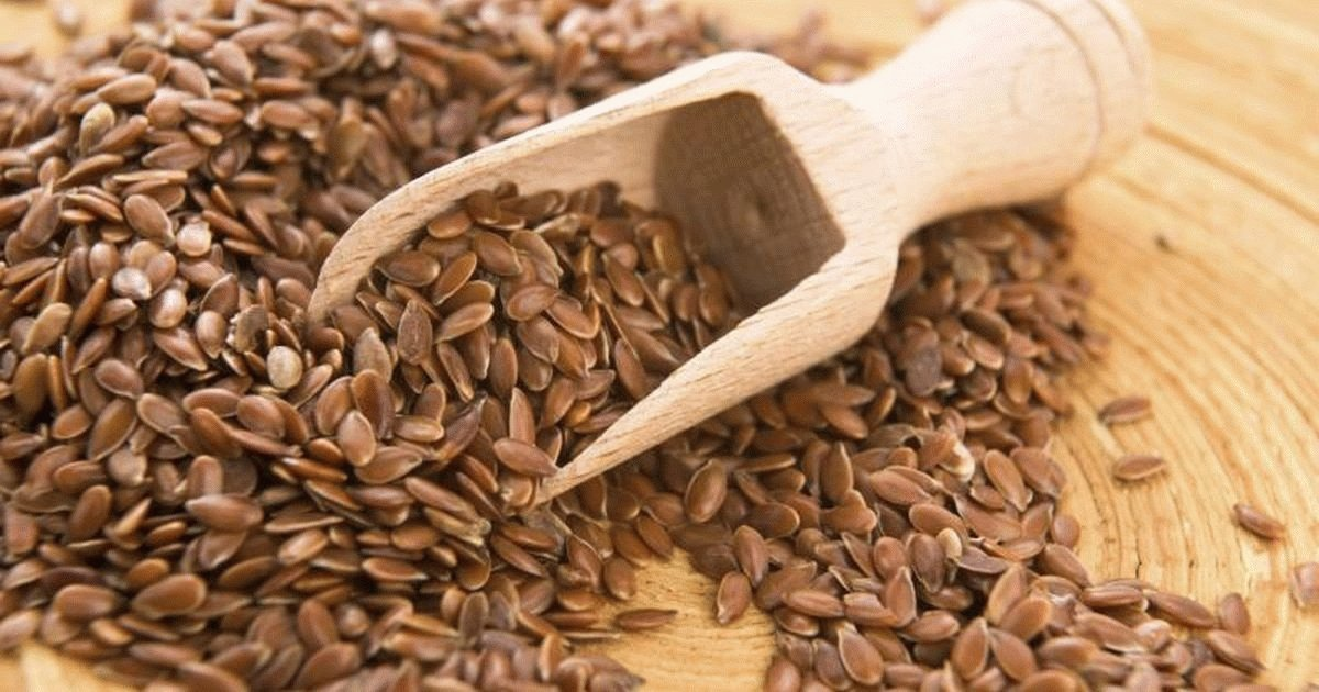 Семена льна при язве желудка и двенадцатиперстной кишки
