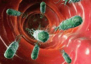 Распространение бактерий в пищеводе
