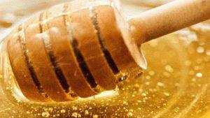 Натуральный мёд способен лечить язву