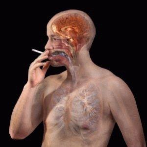 Влияние никотина