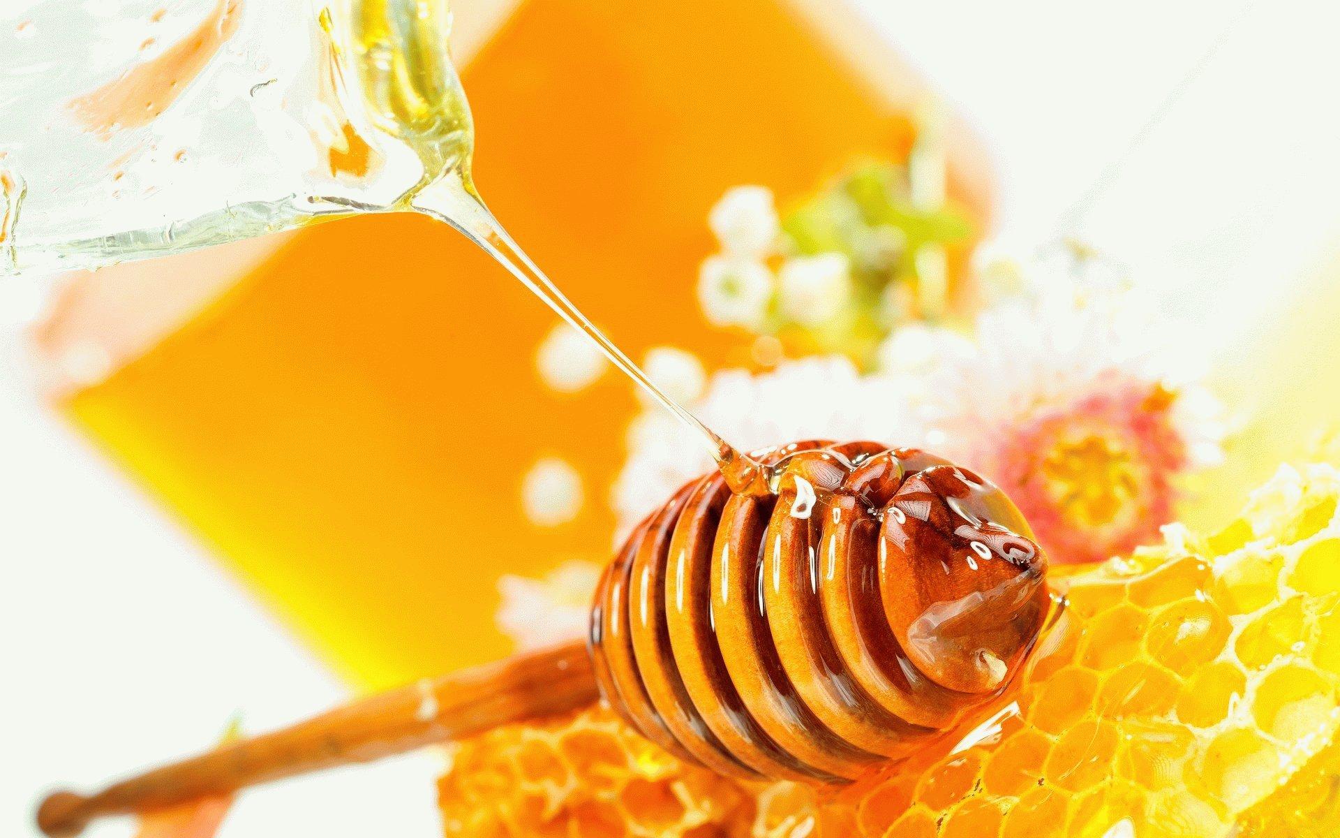 Мед при гастрите: можно или нет