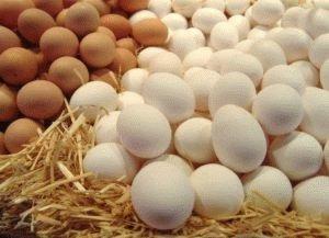 Яйцо – кладезь витаминов
