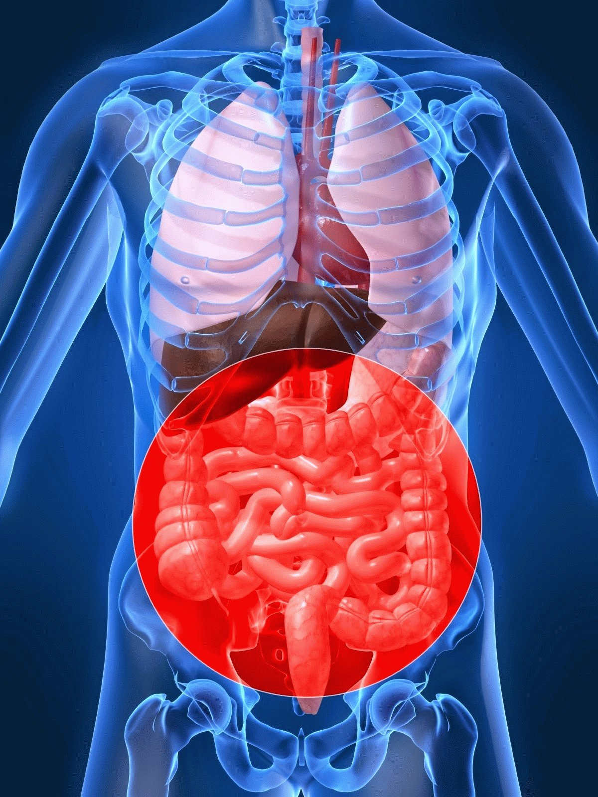 Дисбиоз кишечника новые фото