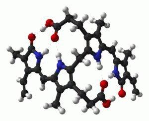 Ядовитое вещество билирубин