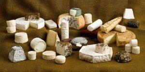 Экзотические сорта сыра