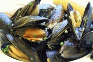 Моллюски в питании