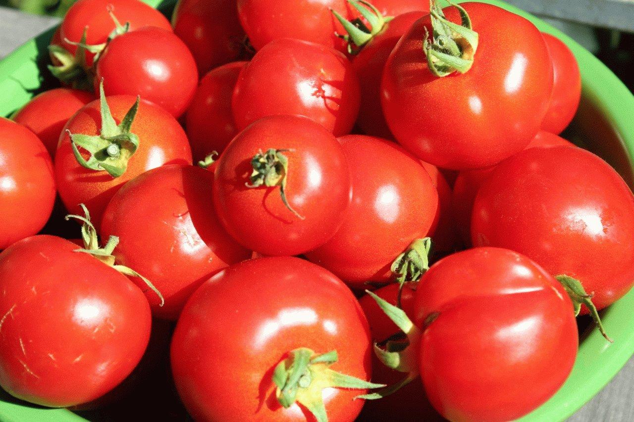 Помидоры можно кушать при холецистите и панкреатите