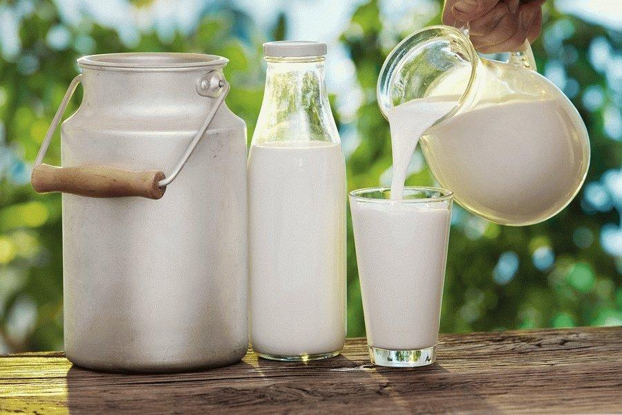 Можно ли пить козье молоко при панкреатите