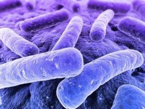 Вторичная бактериальная инфекция