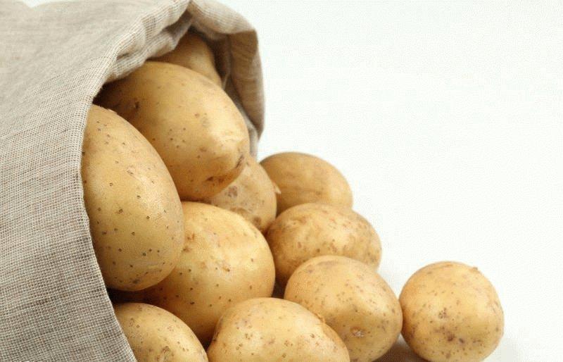картофель от геморроя отзывы