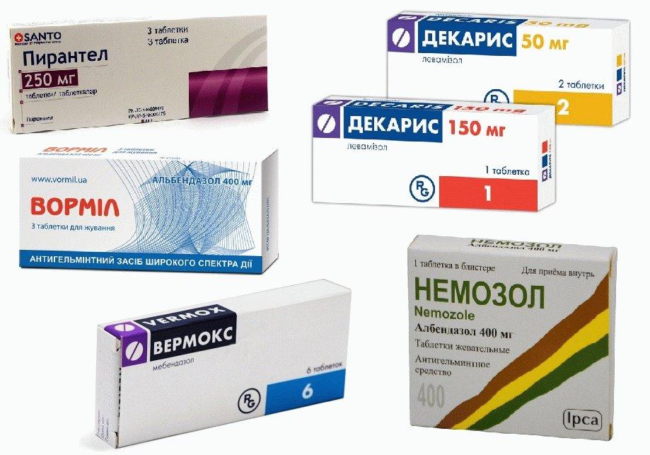 лекарство от глистов и паразитов для человека