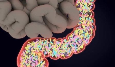 Ультразвуковыми признаками острого деструктивного холецистита являются