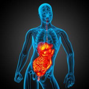 Травма органов живота