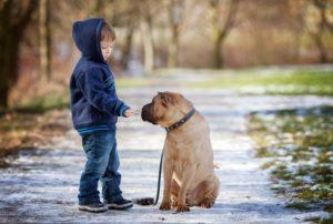 Ребёнок гладит собаку на улице