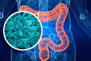 Вирус в кишечном тракте