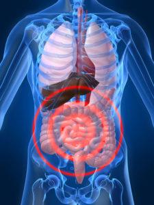 Вирус в тонком кишечнике