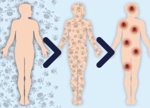 Токсины попадают в организм