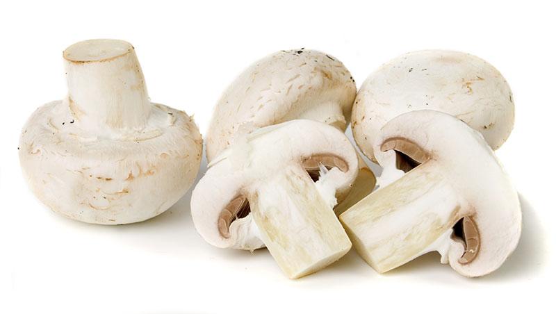 Первые признаки отравления грибами: помощь и лечение в домашних условиях