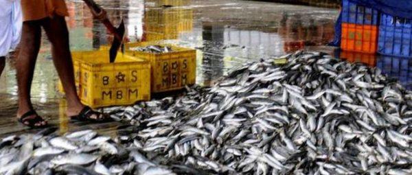 Лов рыбы на траулере