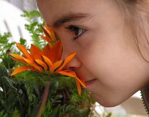 Ребёнок нюхает цветок