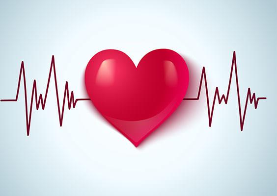 Хорошая работа сердца