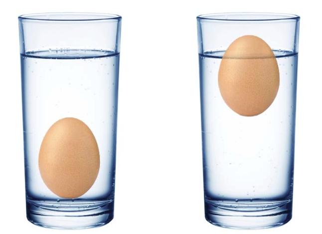 Отравление несвежим яйцом