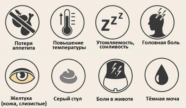 Симптомы заражения печени