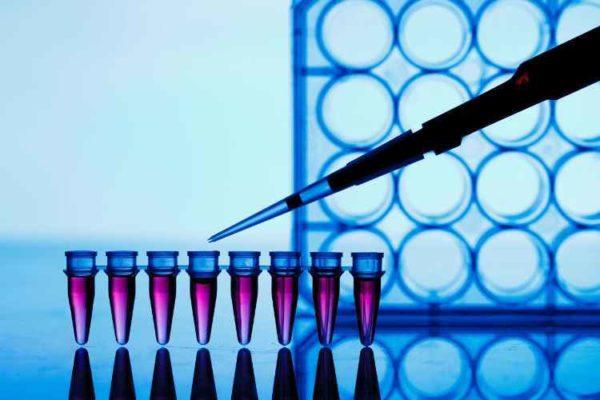 ПЦР-анализ на гепатит