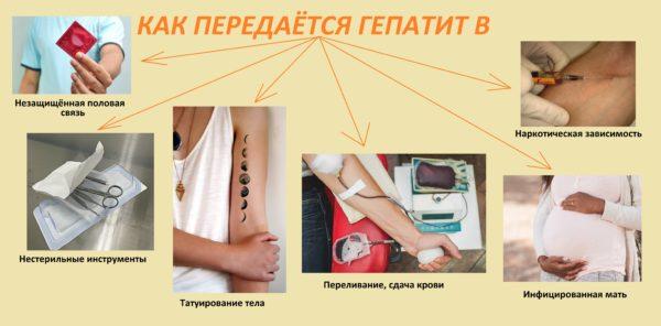 Пути заражения гепатитом В