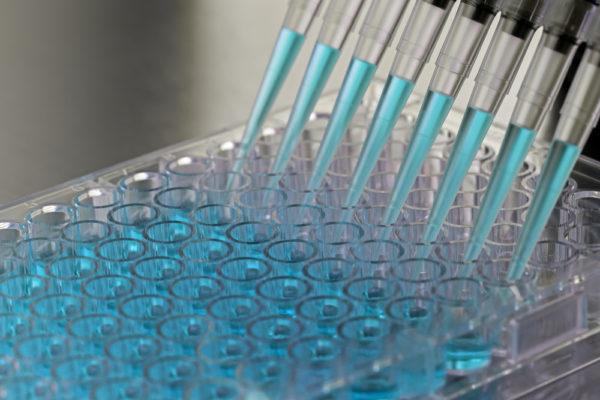 Проведение иммунноферментного теста
