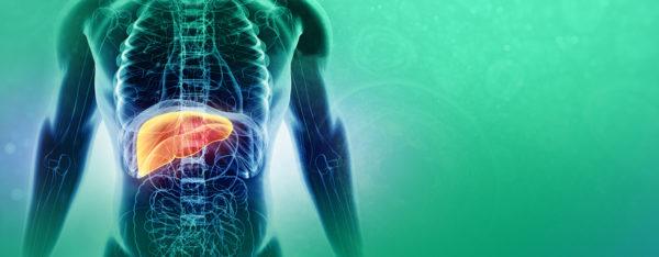 Вирусный гепатит человека
