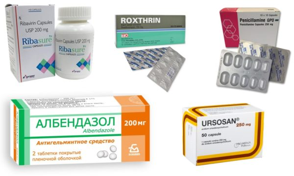 Лекарственные печёночные препараты